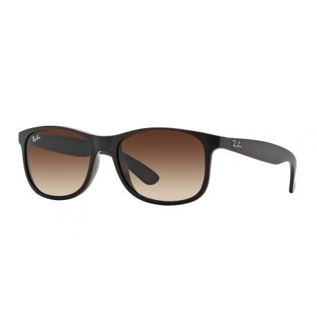 Ray-Ban RB4202 Andy 607313 | Frame: matte brown | Lenses: brown gradient