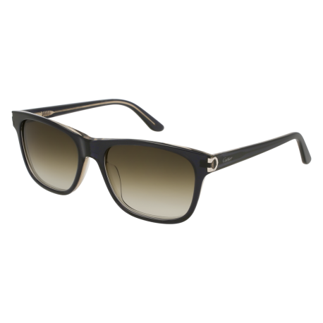 Cartier CT0001S 004 | Frame: blue | Lenses: green
