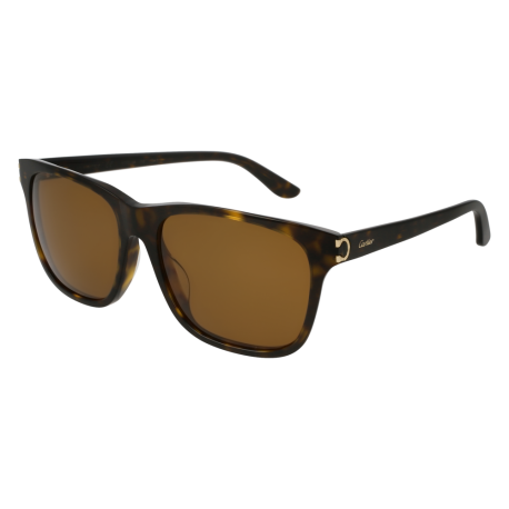 Cartier CT0001SA 002 | Frame: havana | Lenses: brown anti-reflective