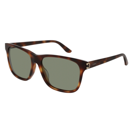Cartier CT0001SA 003 | Frame: havana | Lenses: green anti-reflective