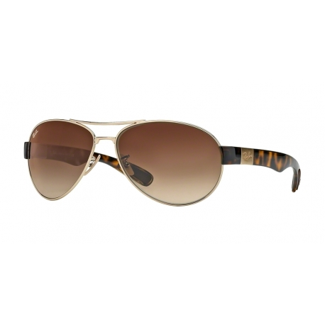 Ray-Ban RB3509 001/13 | Frame: arista | Lenses: brown gradient